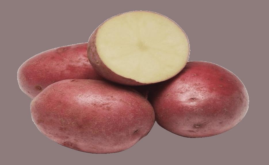 patata laura